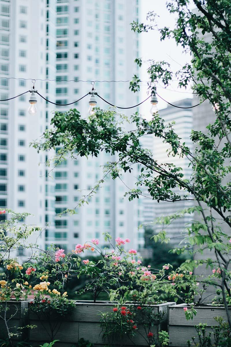 etancheite jardinieres HD Etanchéité toulouse
